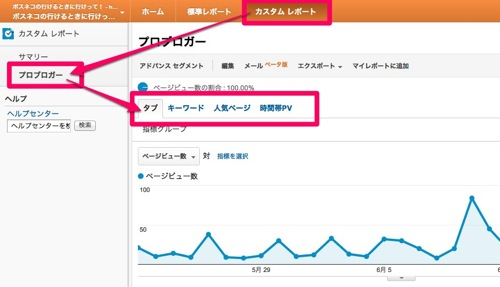 プロブロガー  Google Analytics