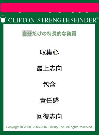 自分だけの特徴的な資質 才能 強み ストレングスファインダーの結果